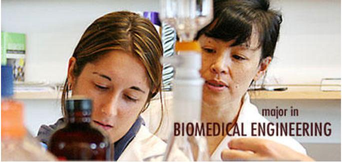 Majoring In Biomedical Engineering