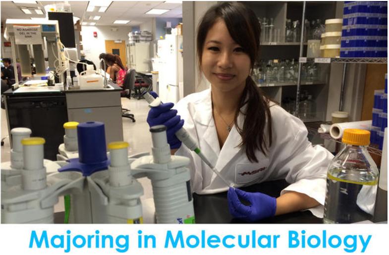 Majoring In Molecular Biology
